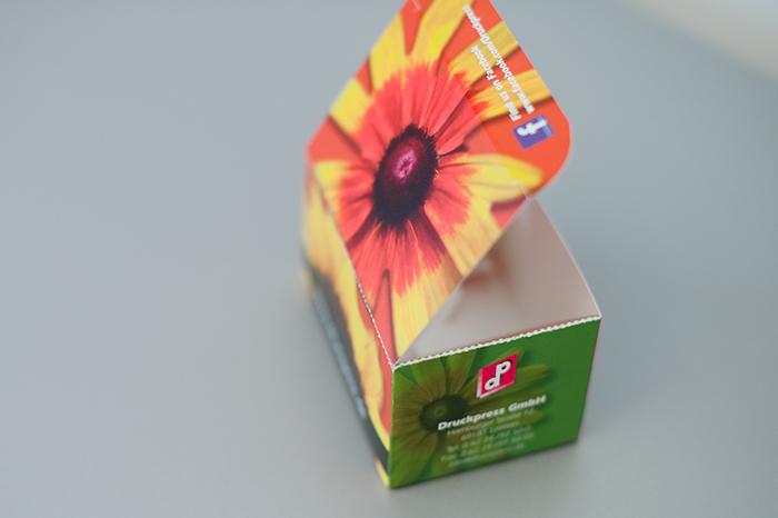 Verpackungen Druckpress Gmbh